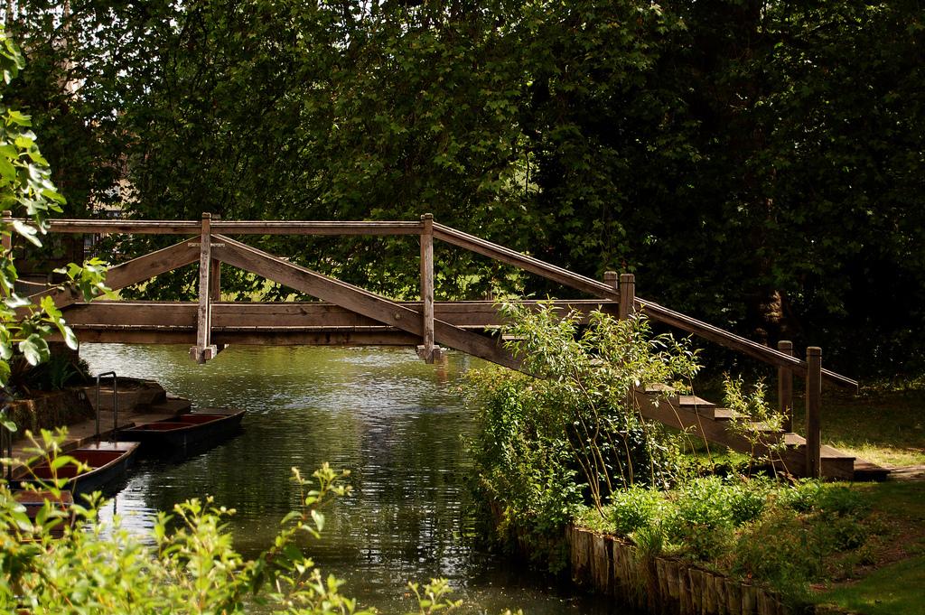 bridge Darwin
